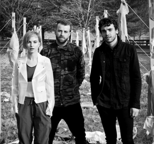 hayley williams, jeremy davis, and taylor york image