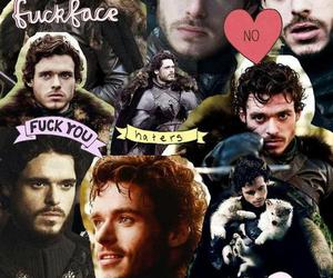 Collage, game of thrones, and robb stark image