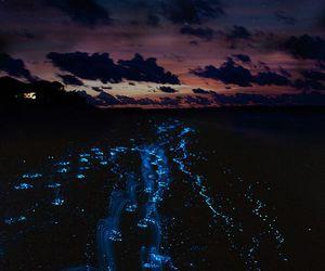 night, sea, and blue image