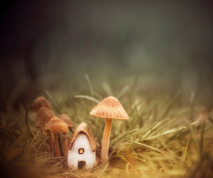 Fairies, mushroom house, and pixie image