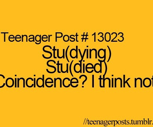 funny, studying, and teenager post image