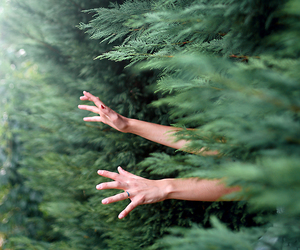 hands, nature, and green image