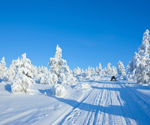 christmas, santa claus, and ski image