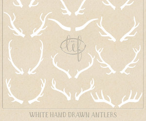 antlers, clipart, and graphic design image