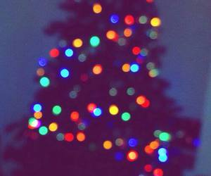 christmas, lights, and tree image