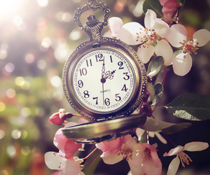 clock, nature, and flower image