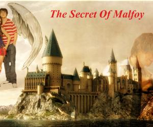 hogwarts, secret, and malfoy image