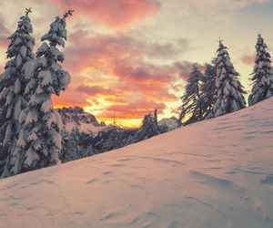 snow, winter, and sky image
