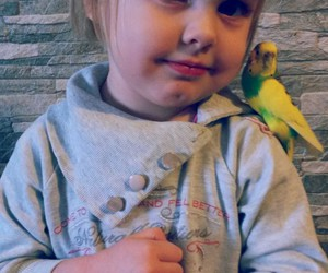 baby, bird, and parrot image