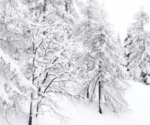 austria, christmas, and snow image