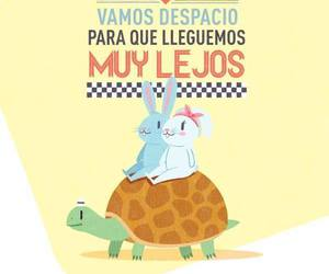 :D, conejos, and Tortuga image