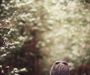 forest, hat, and snow image