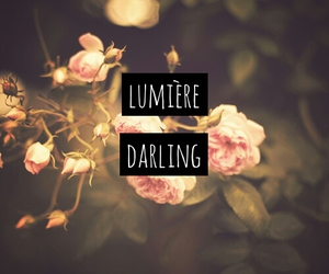 darling, indie, and love quote image