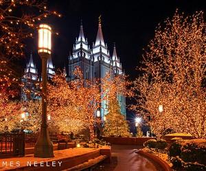 beautiful, light, and christmas image