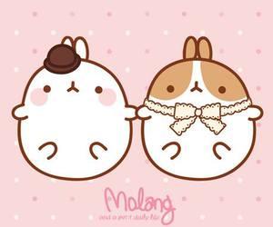 molang, couple, and kawaii image