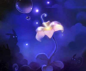 flower, night, and apofiss image