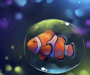 bubble, clownfish, and apofiss image