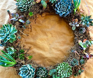 succulent and wreath image