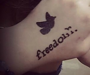 bird, freedom, and tatoo image