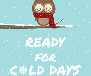 cold, days, and owl image