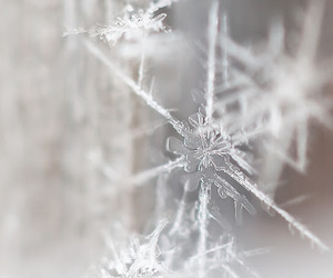 snowflake, winter, and snow image