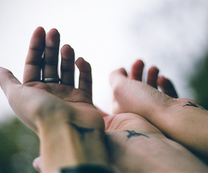tattoo, hands, and bird image