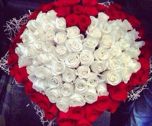 heart, red, and roses image