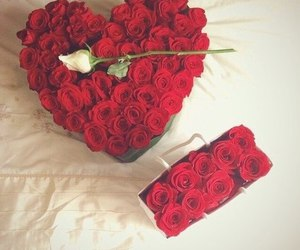 rose, red, and heart image