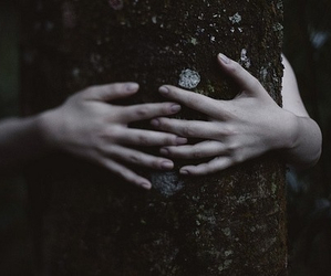 hands, nature, and hug image