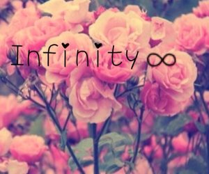 infinity, pink, and flowers image