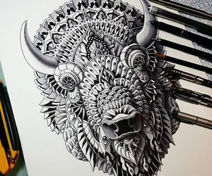 art, bison, and draw image