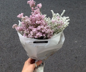 flowers and theme image