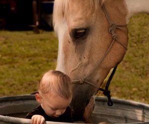 horse, baby, and children image