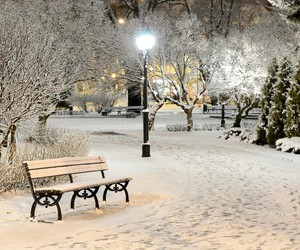 park bench, peace, and romantic place image