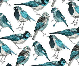 bird, pattern, and background image