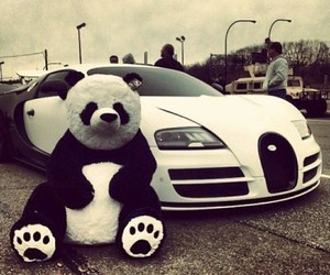 car, panda, and white image