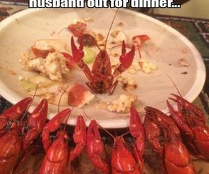 funny, husband, and quotes image