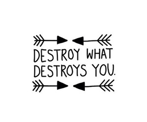 quote, destroy, and life image