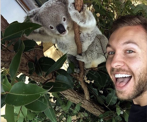 calvin harris and Koala image