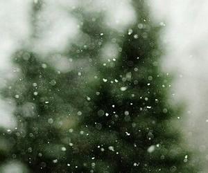 snow tree christmas image