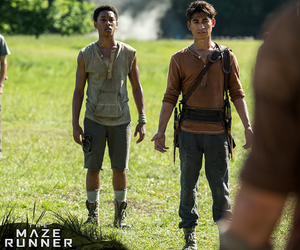 the maze runner, maze runner, and gladers image