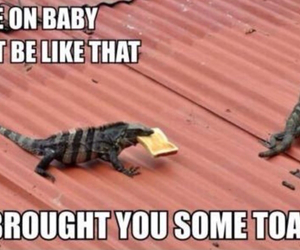funny, toast, and lizard image