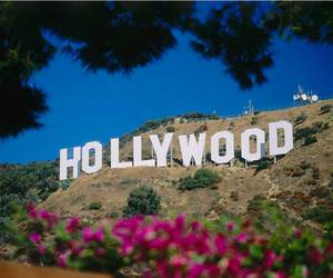 hollywood and beautiful image