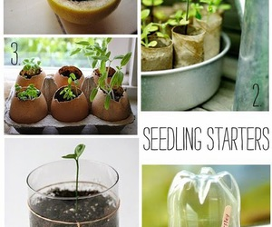 gardening and ideas image