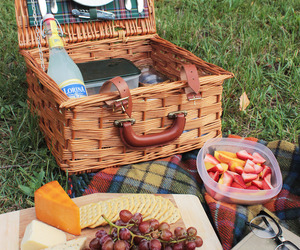 date, picnic, and summer day image