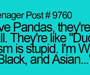 funny and panda image