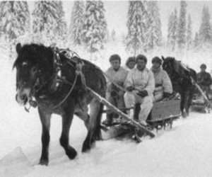 winter war, finnhorse, and itsenäisyys image