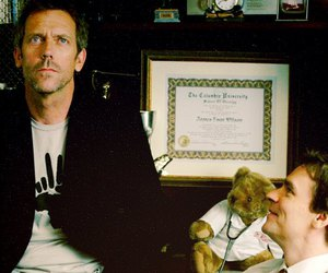 dr house, house md, and wilson image