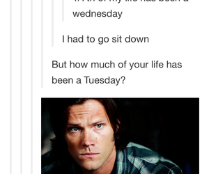supernatural, sam winchester, and tuesday image