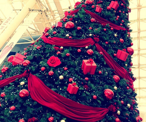 christmas, red, and tree image